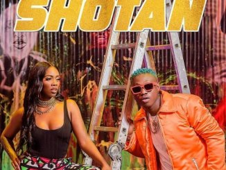 Zlatan x Tiwa Savage Shotan mp3