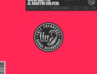 David Guetta – Thing For You ft. Martin Solveig mp3 download
