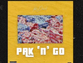 "Kizz Daniel – Pak ""n"" Go (Park and Go) mp3 download"