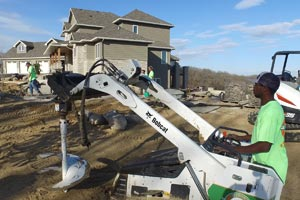 Plant, Tree And Shrubs - Executive Outdoor Living   Omaha, NE on Executive Outdoor Living id=23114