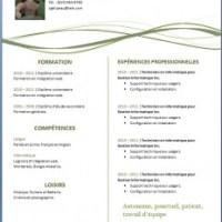 Exemple de cv info exemples et mod les gratuits - Telecharger writer open office gratuit ...