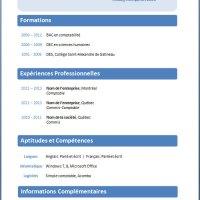 Modèles et exemples de CV #212 à 218