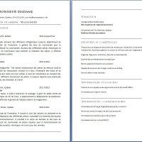 Curriculum Vitae d'un Magasinier ou Magasinière