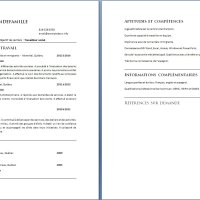 Exemple de CV Travailleur social