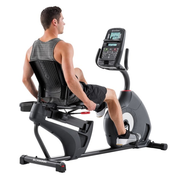 schwinn 230 recumbent bike review