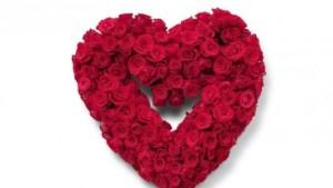 Cuore rose rosse – Exhibition