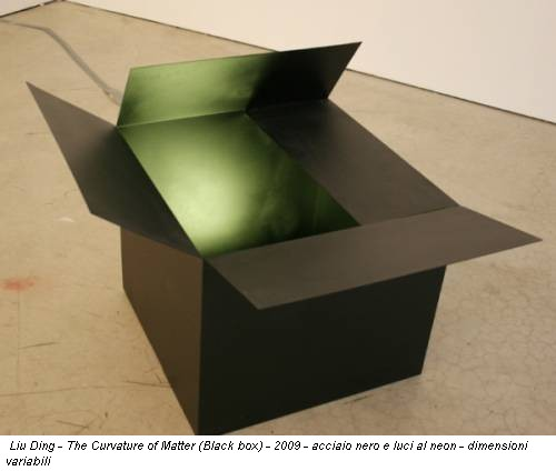 Liu Ding - The  Curvature of Matter (Black box) - 2009 - acciaio nero e luci al neon -  dimensioni variabili