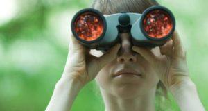 lornetka do obserwacji ptaków
