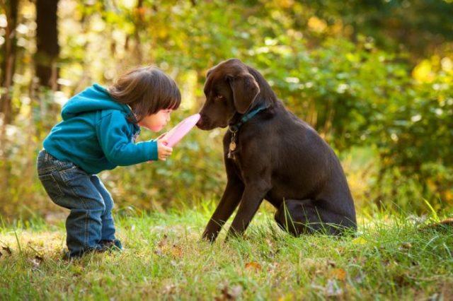 Jak nauczyć dziecko bawić się z psem bezpiecznie