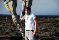 Großer Kaktus