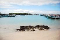 Isla Isabela 4