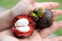 Kuala Lumpur - Unknown fruits
