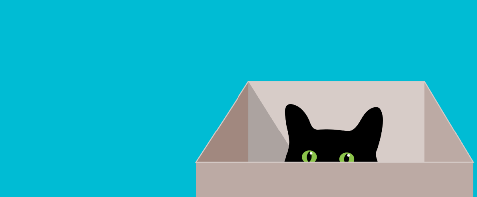 The observer effect is not about cats in boxes