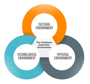 The Three Environments That Create Every Employee Experience