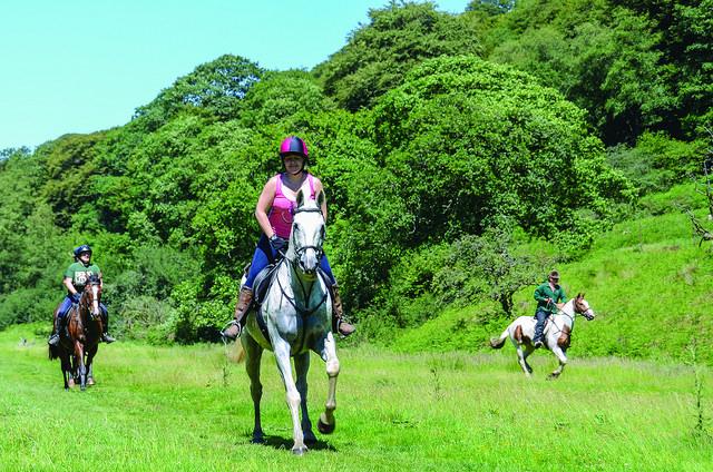 Horse riders, Exmoor