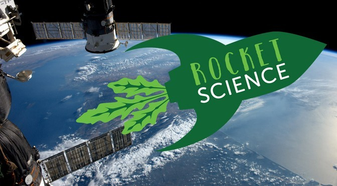 KING'S COLLEGE TO GROW SEEDS FROM SPACE!