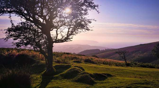 QUANTOCK HILLS AONB AND DUKE OF EDINBURGH PHOTO COMPETITION