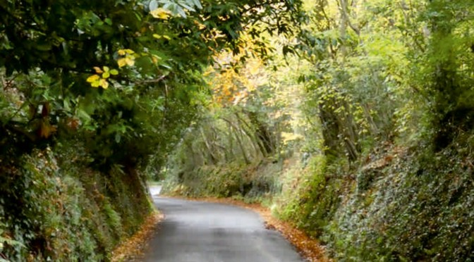EXMOOR SOCIETY POETRY COMPETITION RESULTS