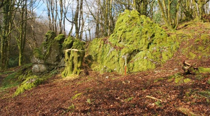 IN SEARCH OF JOHN KNIGHT'S LOST GARDENS OF SIMONSBATH