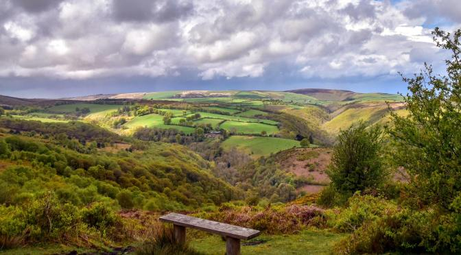 EXMOOR SOCIETY PHOTOGRAPHIC COMPETITION WINNERS