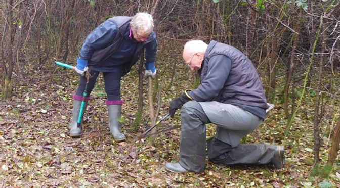 CALL FOR VOLUNTEERS FOR CONSERVATION DAY IN FREMINGTON NEXT WEEK