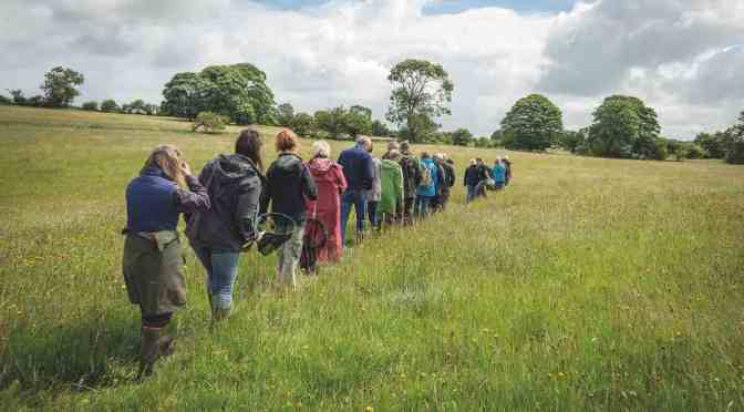 Somerset Wildlife Trust: Somerset Nature Connections project