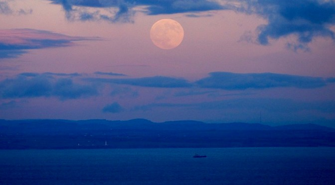 A call to explore Exmoor's hidden night world
