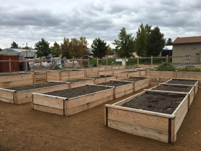 community-garden-beds