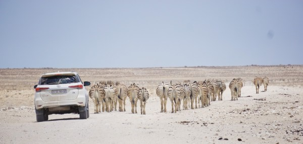 best-pics-namibiadsc08355