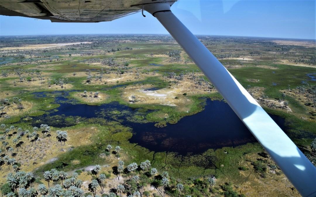 okavango-scenic-flightdsc_2971