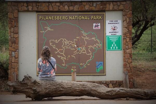pilanesbergdsc00696