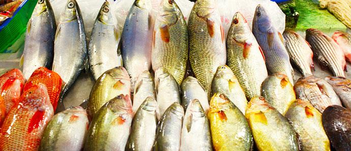 Maldivas mercados