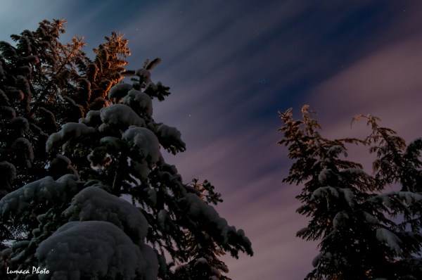 Calm, Chill, Cloud, Cold, Exotic Wahsington, ExoticWashington.com, Lumaca Photo, Night Photography, Nikon D300s, Pine Trees, Serenity, Snoqualmie Pass, Snow, Snowshoeing, Stars, Trees, USA, Washington, Winter