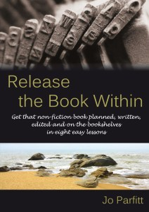Book Cover: Release the Book Within