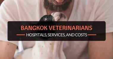 bangkok veterinarians