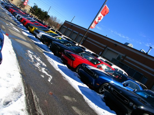 A line of cars for sale at a car dealership.