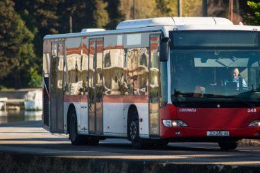 Liburnija – Zadar's Public Bus System