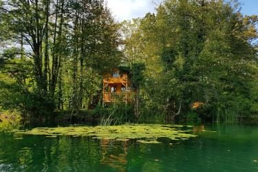 Treehouses of Croatia