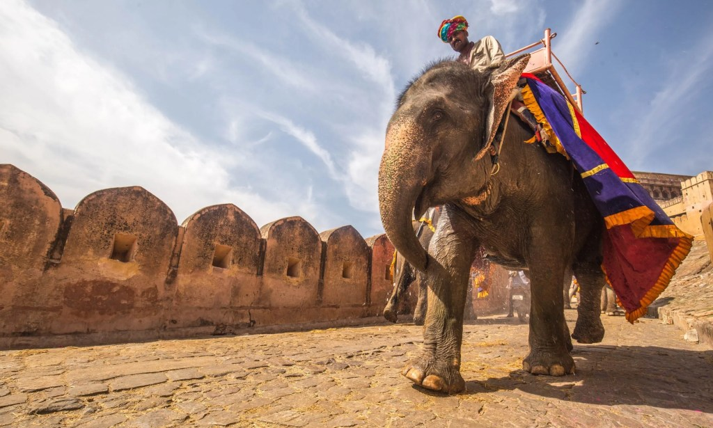 india travel tips for the complete beginner