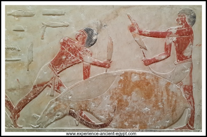 Ancient Egyptian Painting at a Tomb in Sakkara