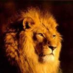 Réinitialiser son mot de passe Mac OSX Lion