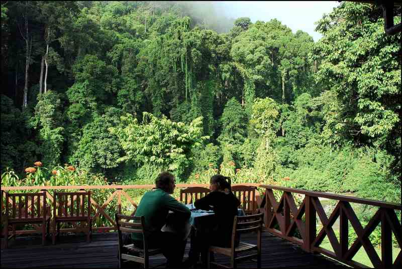 Borneo Rainforest Lodge