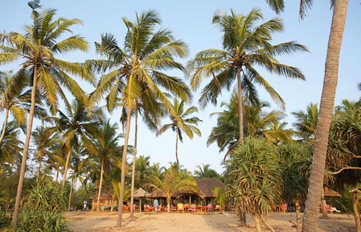 Neeleshwar beach is one of the best beaches in India