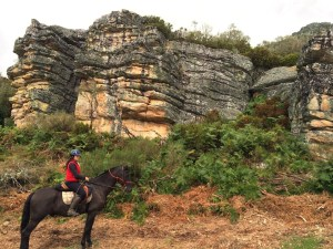 Ruta con Equus Boria en la Sierra de Boria en San Vicente de la Barquera en Cantabria