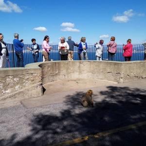 Gibraltar visita turística