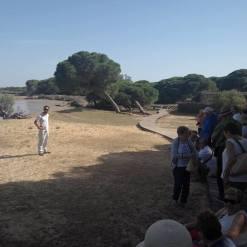 Grupo de visitantes con Receptivo Cádiz en el Parque Nacional de Doñana