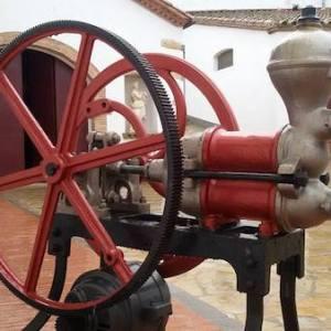Visita bodega en la comarca del Alto Penedés