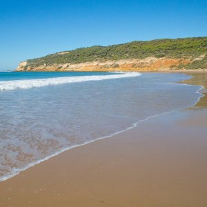 Playa de la Hierbabuena en Barbate