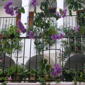 Hospedería Casa de las Piedras en Grazalema