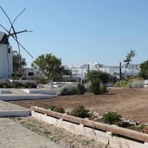 Los molinos harineros en Vejer de la Frontera